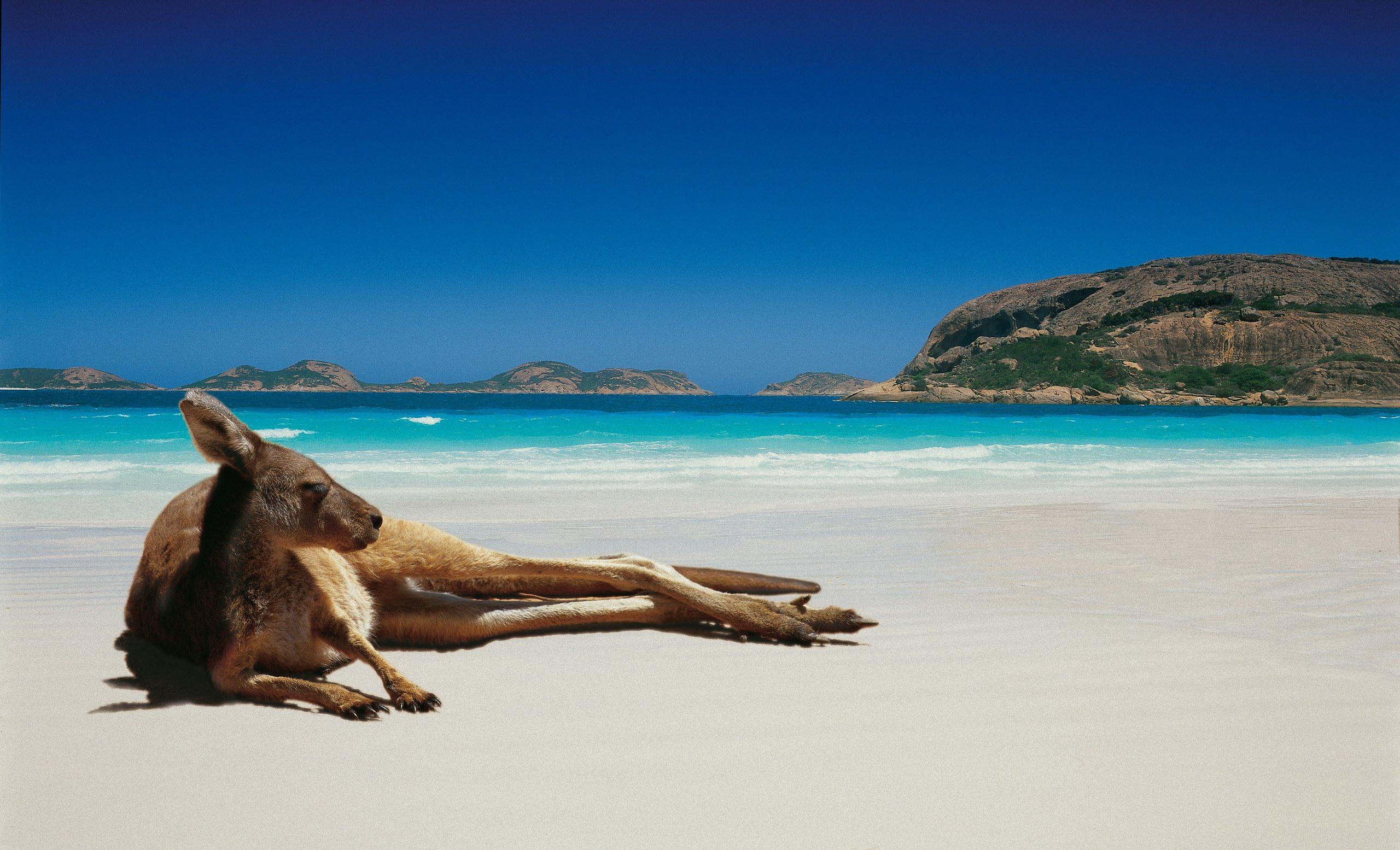 Австралия и Южен Пасифик или Океания