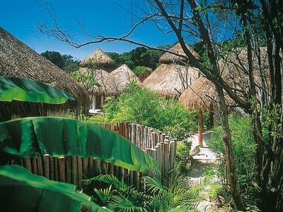 Еко лукс сред тропически гори