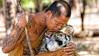 Най-доброто от Тайланд II
