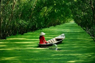 Величествен Виетнам